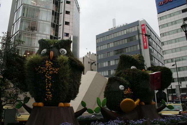 画像 035.JPG
