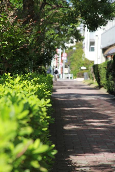 画像2013.05.01 004.JPG